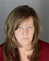 BETH ANNE HADDOCK Mugshot / Oakland County MI Arrests / Oakland County Michigan Arrests