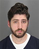 JOSHUA MICHAEL SOULLIERE Mugshot / Oakland County MI Arrests / Oakland County Michigan Arrests