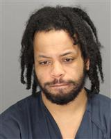 JOSHUA DAVIDPAUL WHITE Mugshot / Oakland County MI Arrests / Oakland County Michigan Arrests